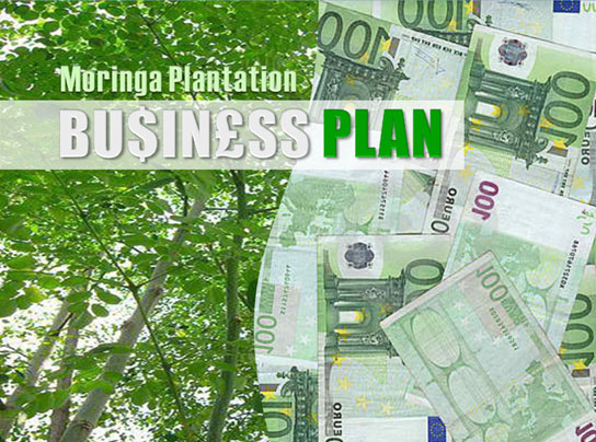Sandalwood part of business plan