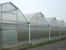 Israel green house technology4