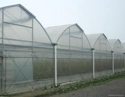 Israel green house technology4