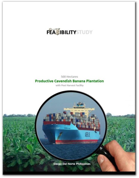 Feasibility Study Cavendish Banana - Cover