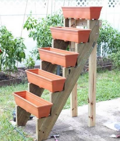 stairs garden