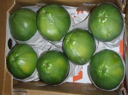 Papaya in Box