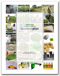 Moringa Cultivation and Processing Business Plan
